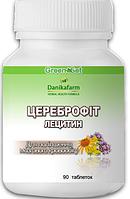Лецитин - цереброфит