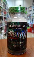 Жиросжигатели Blackstone LabsCobra-6P Extreme 60 caps