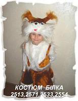 Детский карнавальный костюм - белка (г. Николаев)