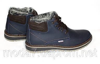 Мужские зимние ботинки Tommy Hilfiger синие реплика