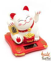 Кошка Манэки Нэко на батарее