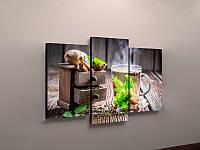 Модульная картина для декора гостиной настенная Чай Мята Деревянный фон 90х70 из 3-х частей