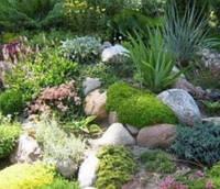 Японский сад камней ( интересные статьи )