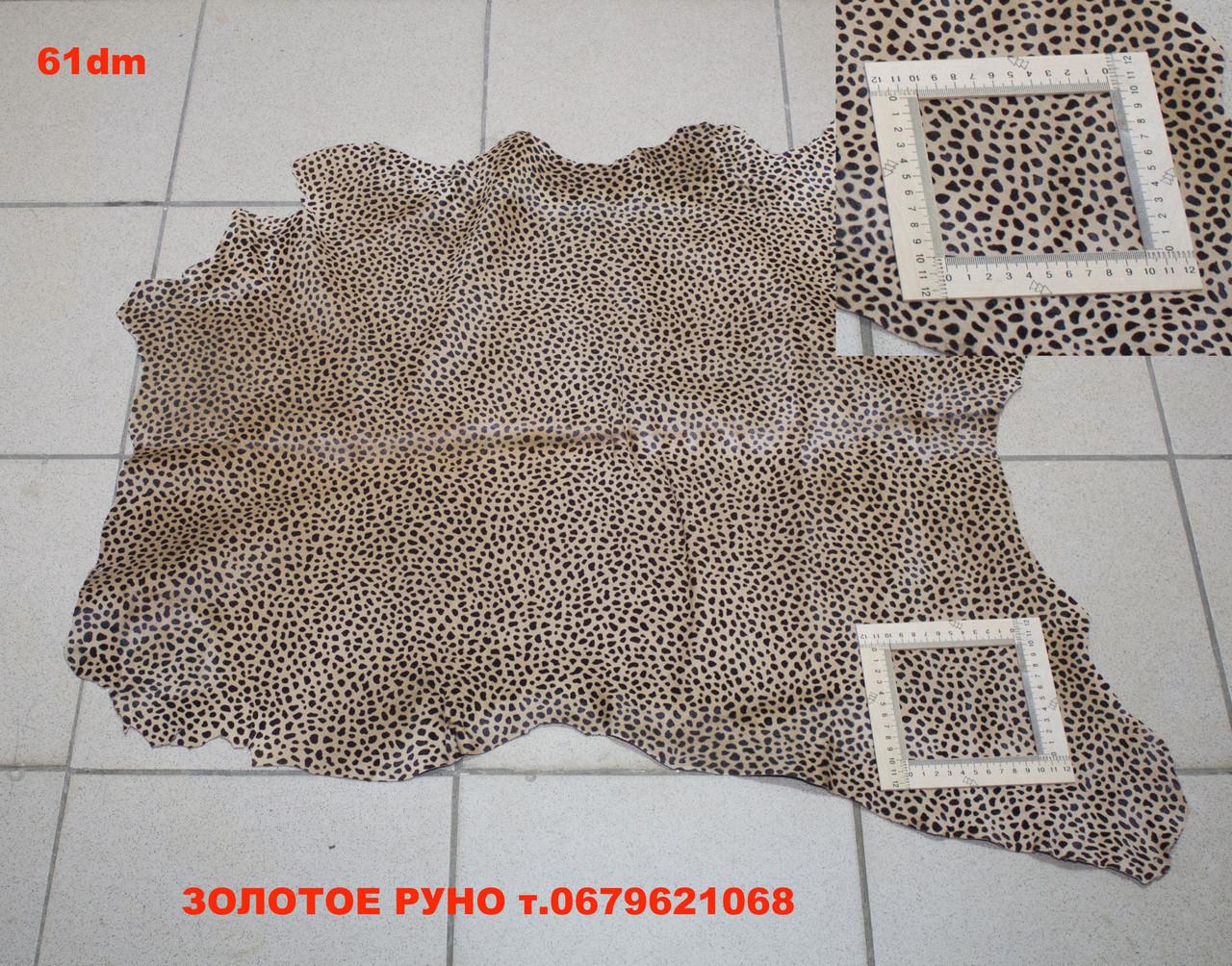 Кожа пони леопард 61