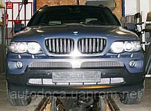 Декоративно-защитная сетка радиатора BMW X5 (E53) 1999- фальшрадиаторная решетка, бампер