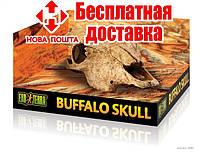Exo Terra Buffalo Skull - декорация череп быка.