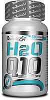 BIOTECH Nutrition H2o Q10 60 капс