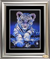 Озорной тигренок