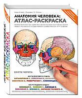 Элсон Л., Кэпит У. Анатомия человека: атлас-раскраска