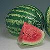Семена арбуза Кримсон Свит 500 г. Hollar Seeds