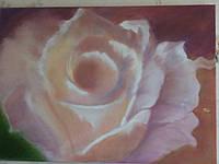 Картина № 6. Роза 50*70 см. Холст. Масло.