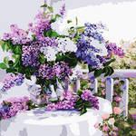 Цветы, натюрморты (раскраска без коробки)