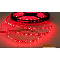 Светодиодная лента SMD 3528 на 60 диодов в 1-м метре, 4,8Вт/1м, красный цвет, герметичная, гарантия 12 месяцев