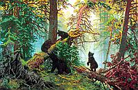 Схема для вышивки бисером Утро в сосновом лесу, размер 50х33 см