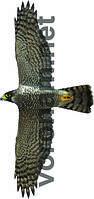 Визуальный отпугиватель птиц Хищник 1