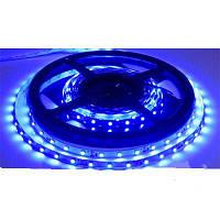 Светодиодная лента SMD 3528 на 60 диодов в 1-м метре, 4,8Вт/1м, синий цвет, не герметичная, гарантия 12 месяце