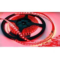 Светодиодная лента SMD 3528 на 120 диодов в 1-м метре, 9,6Вт/1м, красный цвет, не герметичная