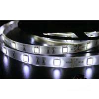 Светодиодная лента SMD 5050 на 30 диодов в 1-м метре, 7,2Вт/1м, белый холодный цвет, герметичная