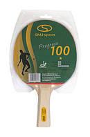 Ракетка для настольного тенниса SMJ Sport 100