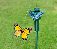 Летючий метелик на сонячній панелі