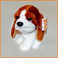 Мягкая игрушка собачка бассет хаунд 15 см
