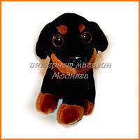 Мягкая игрушка собачка пинчир 15 см