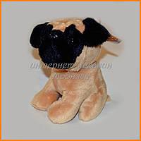 Мягкая игрушка собачка мопс 15 см