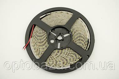 LED лента белый SMD 2835 120д/м, (5 м) герметичная