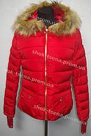 Женская куртка зимняя на замке с капюшоном красная