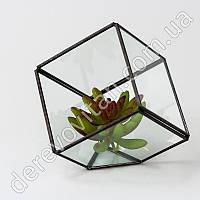 Стеклянная ваза для флорариума, куб, 16 см