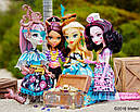Кукла Monster High Дракулаура (Draculaura) из серии Shriek Wrecked Монстр Хай, фото 8