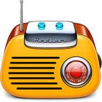 Реклама на рейтинговых радио станциях во всех регионах страны