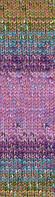 Пряжа Show (Шоу) Punto Batik Design Alize, 6351