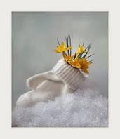 11/12/2013 Последняя поставка зимней коллекции ТМ Одягайко