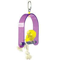 Качеля для мелкого попугая с пензой.