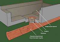 Свинокомплекс (фрагмент навозной ванной)