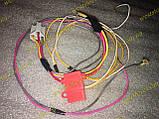 Джгут проводів электробензонасоса низького тиску універсальний, фото 3