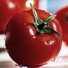 Семена томата Исла-гранде F1 100 сем. Nasko