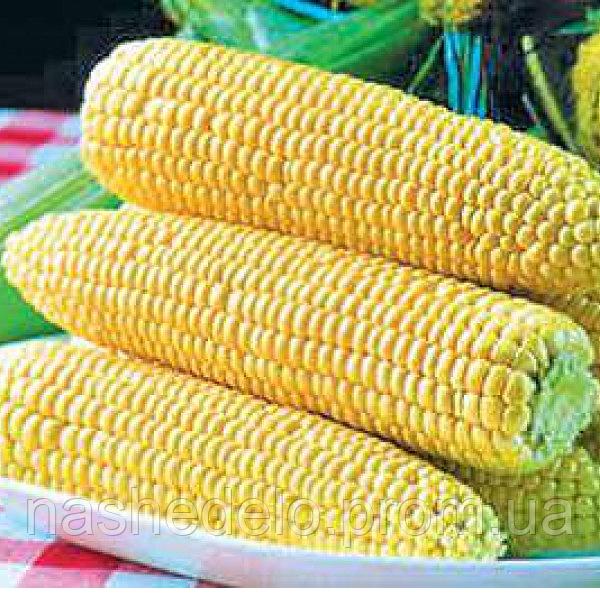 Семена кукурузы сахарной Спирит F1 20 сем. Садыба Центр