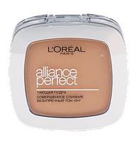 Пудра L'Oreal Alliance Perfect R3