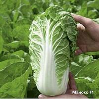 Семена ультра-раннего  все сезонного гибрида пекинской капусты для всех видов выращивания сорт Маноко F1