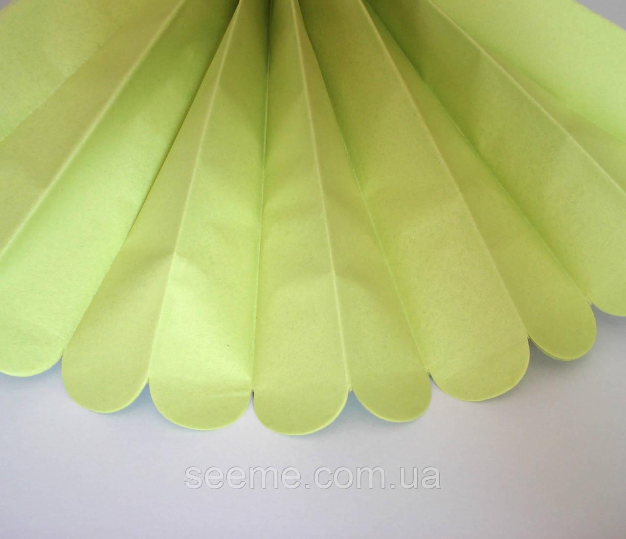Паперові помпони з тишею «Pistachio», діаметр 25 див.