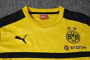 Спортивный костюм Borussia, фото 2