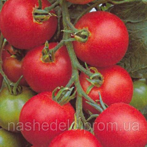 Семена томата Толстой F1 0,05 гр. Садыба Центр