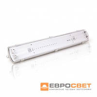 Светильник EVRO-LED-SH-2*10 (2*600мм)