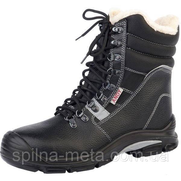 Ботинки мужские зимние специальные Steel Power Andy Winter S3