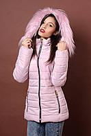 Зимняя женская молодежная куртка. Код К-78-36-17. Цвет пудровый.