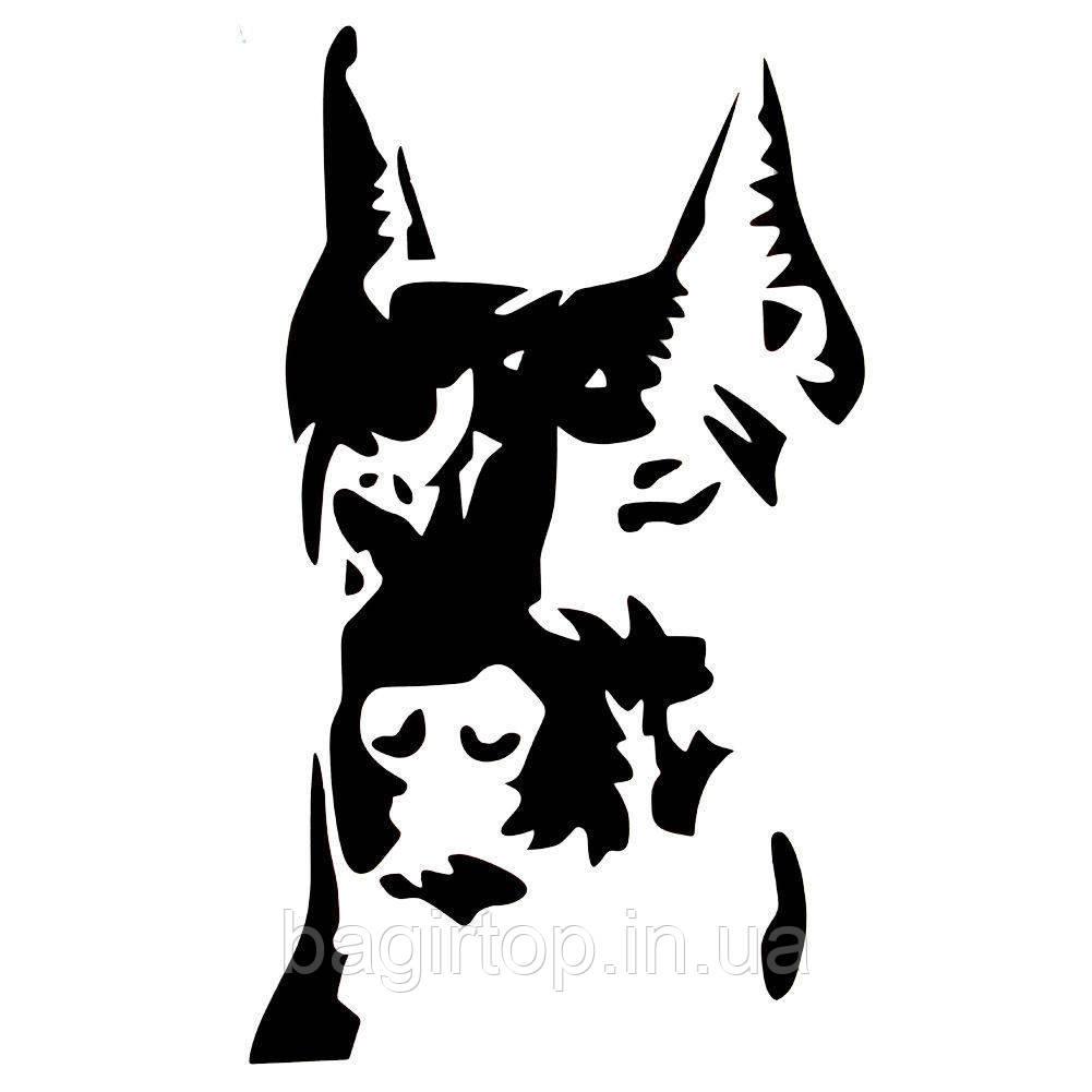Виниловая наклейка (пес) (от 17х10 см)