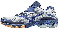 Кроссовки Mizuno Wave Bolt 5 V1GA1660-25