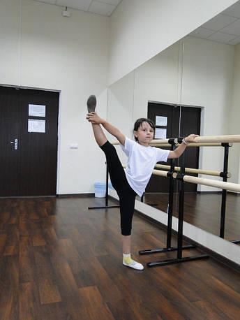 Хореографические (балетные) станки мобильные, фото 2